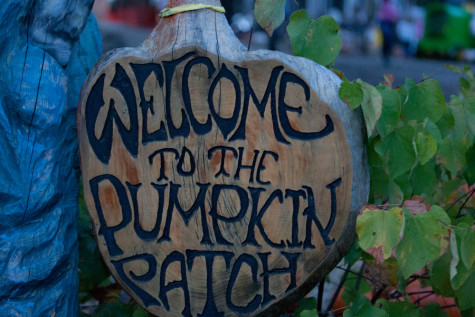 The Flower Mound Pumpkin Patch, A True Halloween Tradition