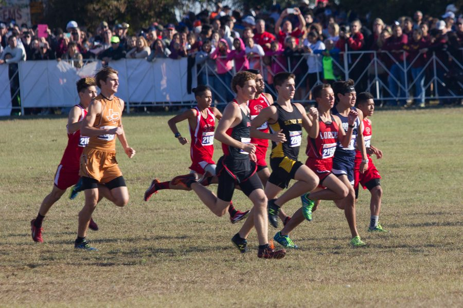 Cross Country Finishes Strong at State