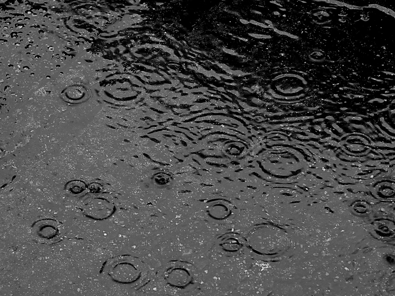 All of these activities are a perfect way to cure rainy day boredom. (Photo by: Creative Commons)