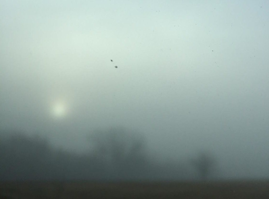 Fog In North Texas (Kristjan Feltes/ The Talon News)