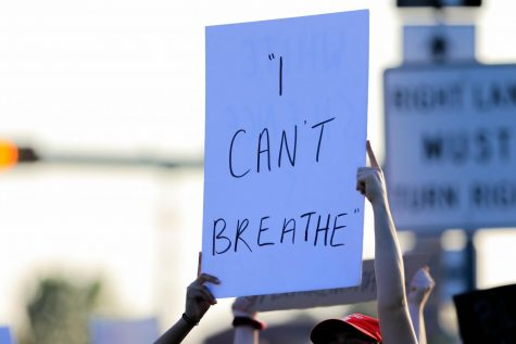 Protesters in Flower Mound call for change (Katie Ray / The Talon News.)
