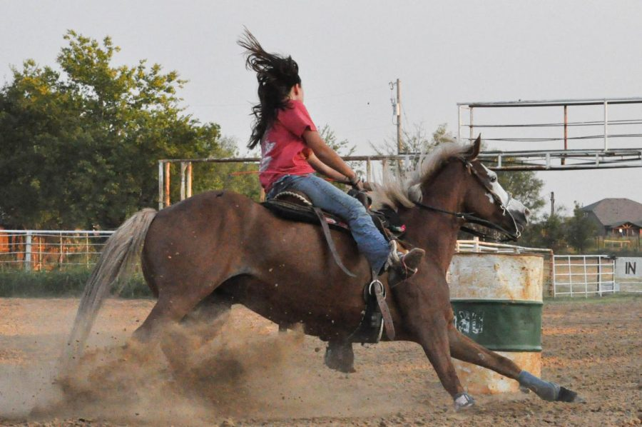 A rodeo team at Argyle would give more students a chance to show off their hobbies and talents. (The Talon News).