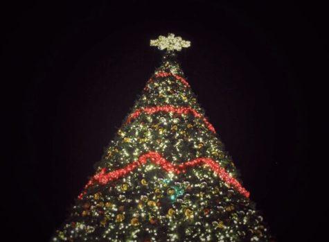 The Christmas Lights of Argyle