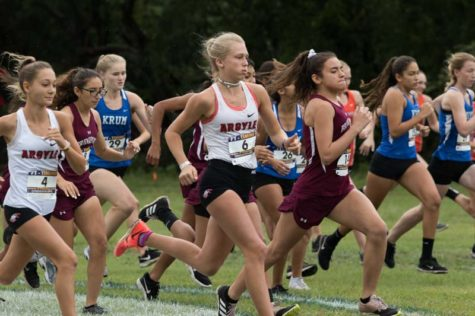 Girls Cross Country Heads to State
